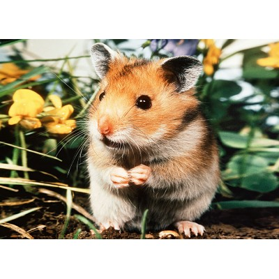 Puzzle Hamster Step Puzzle 77010 01 80 Pieces Jigsaw