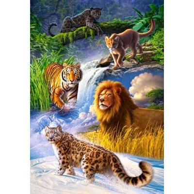 Puzzle Big Cats Castorland 103553 1000 Pieces Jigsaw