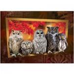 Puzzle  Art-Puzzle-4375 Owls