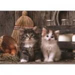 Puzzle  Art-Puzzle-4515 Kittens