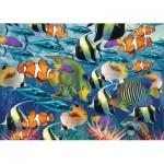 Puzzle   Multi Fish