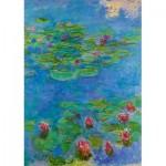 Puzzle  Art-by-Bluebird-60062 Claude Monet - Water Lilies, 1917