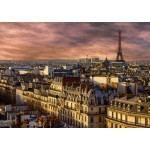 Puzzle  Bluebird-Puzzle-70038 Paris, France