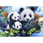 Puzzle  Bluebird-Puzzle-70079 Panda Family