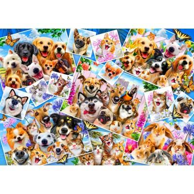 Puzzle Bluebird-Puzzle-70283 Selfie Pet Collage