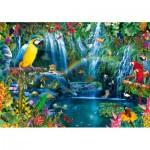 Puzzle  Bluebird-Puzzle-70298-P Parrot Tropics