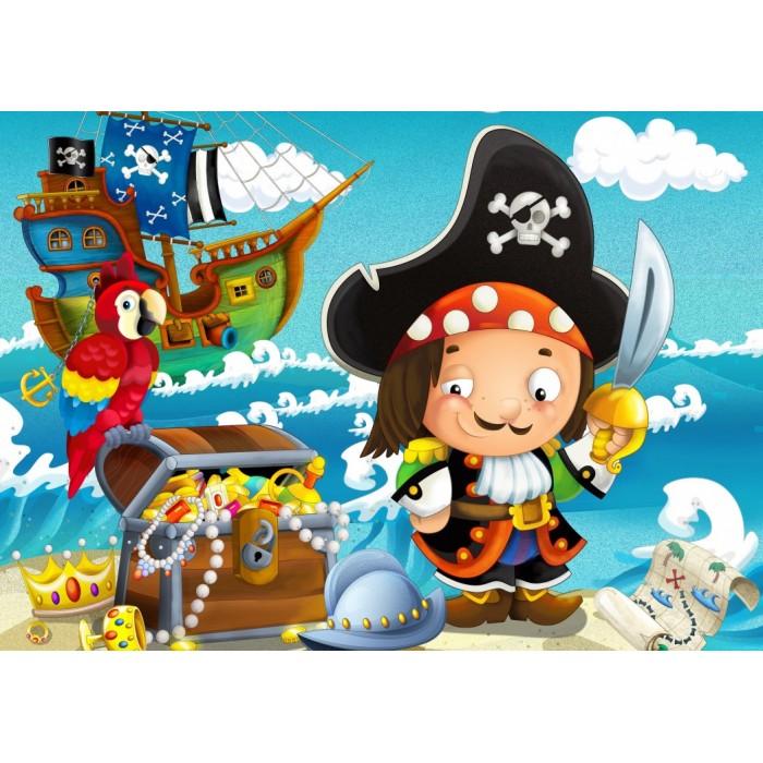 The Treasure of the Pirate