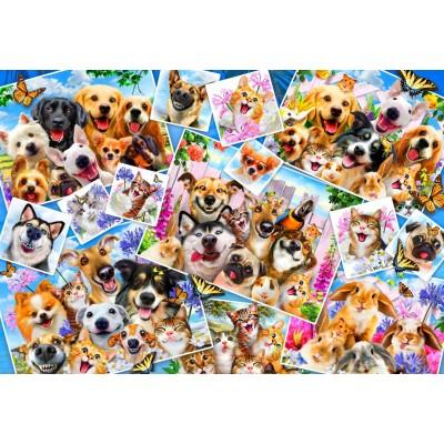 Puzzle Bluebird-Puzzle-70371 Selfie Pet Collage