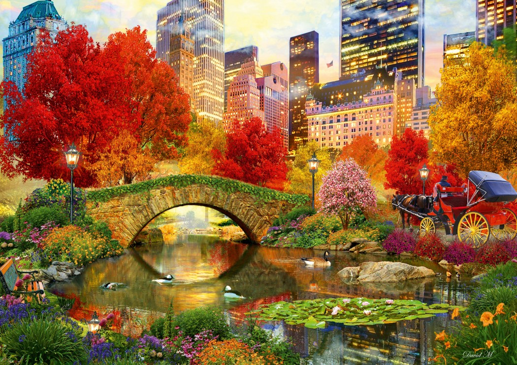 Central Park NYC 1000 piece jigsaw puzzle