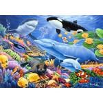 Puzzle   Sealife