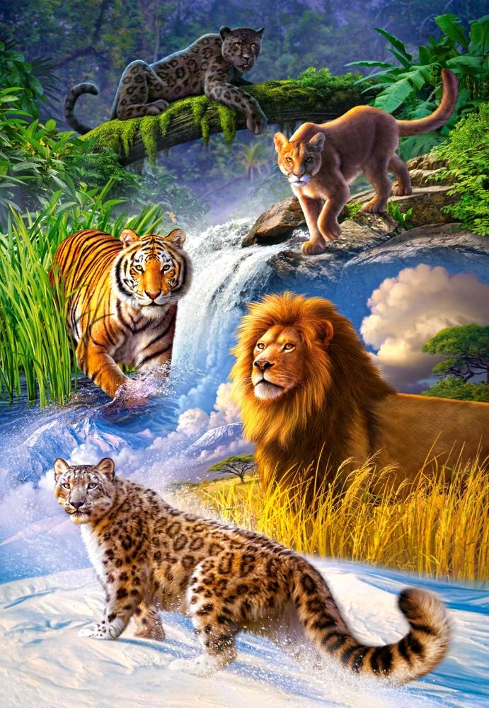 All Big Cat Animals