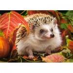 Puzzle  Castorland-018338 Hedgehog