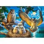 Puzzle  Castorland-018437 Owl Family