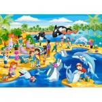 Puzzle  Castorland-066148 Dolphinarium