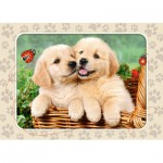 Puzzle  Castorland-06786 Golden Retriever Pups