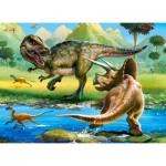Puzzle  Castorland-070084 Dinosaurs