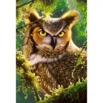 Puzzle  Castorland-103577 Watching & Waiting - Owl