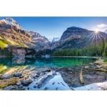Puzzle  Castorland-103638 Lake O'Hara, Canada
