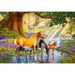 Puzzle  Castorland-103737 Horses by the Stream