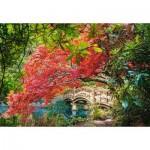 Puzzle  Castorland-103768 Japanese Garden