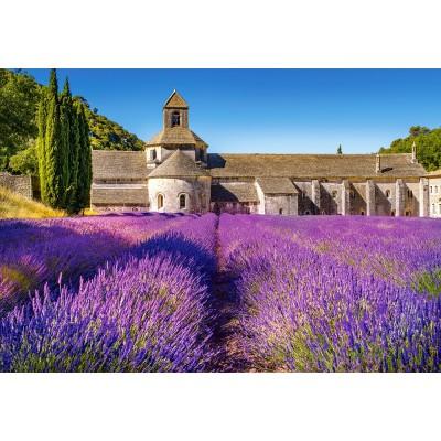 Puzzle Castorland-104284 Provence, France