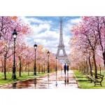 Puzzle  Castorland-104369 Romantic Walk in Paris