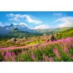 Puzzle  Castorland-104512 Tatras, Poland