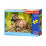 Puzzle  Castorland-13258 Puppy in the Forest