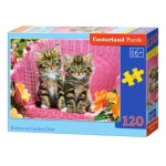 Puzzle  Castorland-13357 Kittens