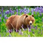 Puzzle  Castorland-13425 Bear