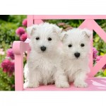 Puzzle  Castorland-13494 White Terrier Puppies