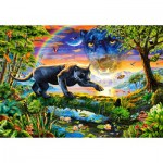 Puzzle  Castorland-151356 Panther Twilight