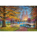 Puzzle  Castorland-151844 Central Park, New York