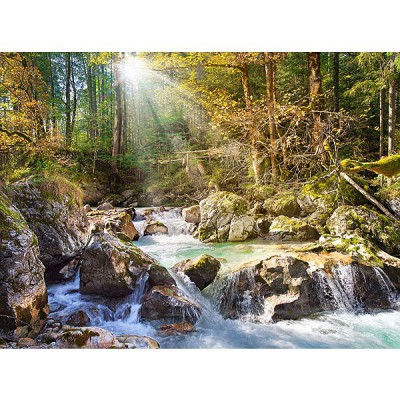Castorland-200382 Jigsaw Puzzle - 2000 Pieces - Stream in the Forest