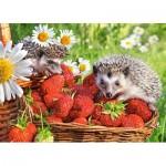 Puzzle  Castorland-27484 Strawberry Dessert