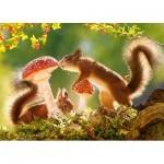 Puzzle  Castorland-27521 Squirrel's Foret Life