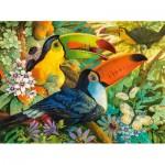 Puzzle  Castorland-300433 David Galchutt: Interlude