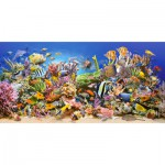 Puzzle  Castorland-400089 The underwater life