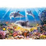 Castorland-51014 Jigsaw Puzzle - 500 Pieces - Dolphin World