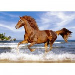 Castorland-51175 Jigsaw Puzzle - 500 Pieces - Spirited Horse