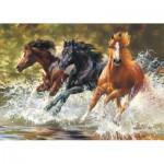 Puzzle  Castorland-51823 Splash !