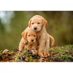 Puppy Love 500 piece jigsaw puzzle