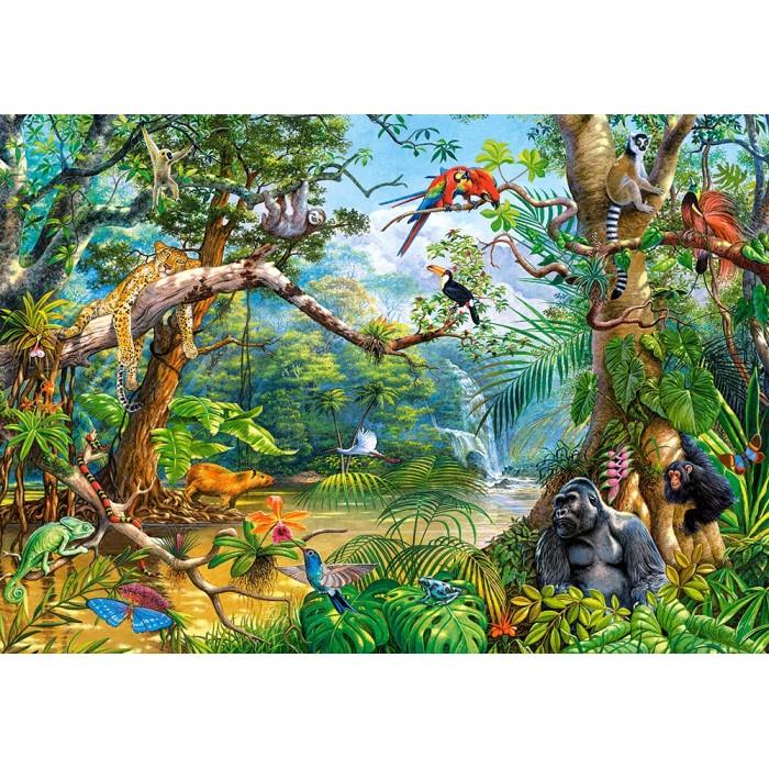 Life Hidden in Jungle