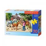 Puzzle  Castorland-B-007066 Stud farm