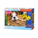 Puzzle  Castorland-B-007134 Sweet Bulldog