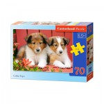 Puzzle  Castorland-B-007141 Collie Pups