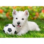 Puzzle  Castorland-B-06823 White Terrier and Football