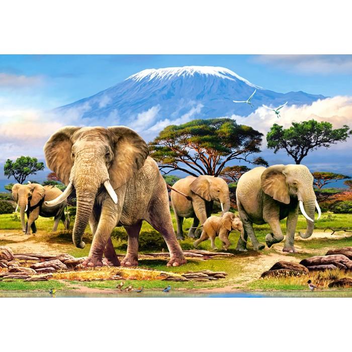 Kilimanjaro Morning Puzzle 1000 pieces