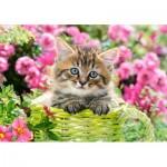 Puzzle   Kitten in Flower Garden