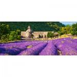 Puzzle   Notre Dame de Senanque, France
